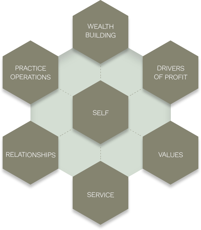 hexagons with text: wealth building, drivers of profit, values, service, relationships, practice operations. One hexagon in center with word self insinde it